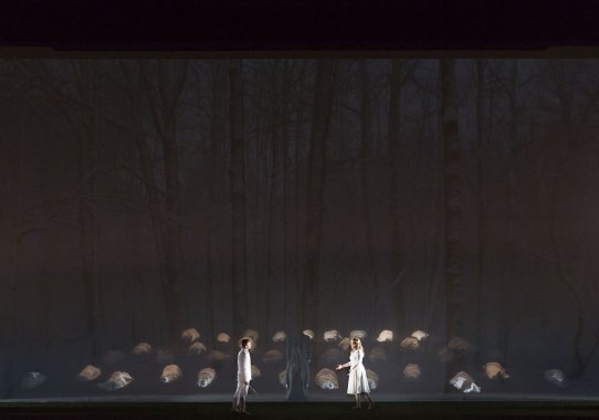 The Magic Flute Paris Opera